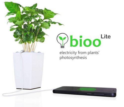 bioolite1